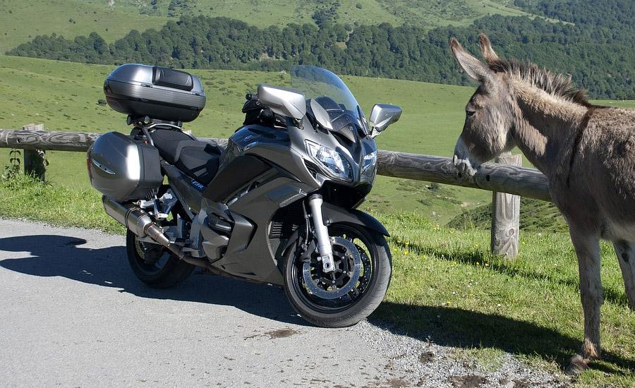 Tour du monde à moto : tout ce que vous devez savoir